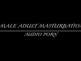 ASMR Audio Porn Male Masturbation