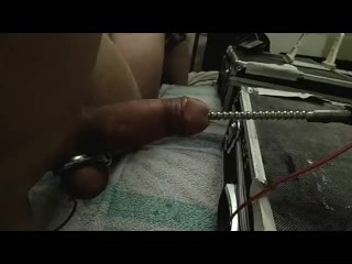 fucking machine with electrode in cock and balls orgasm e-stim cum sounding