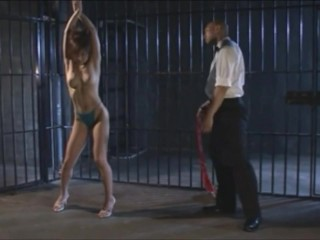 BDSM Compilation By Antfan