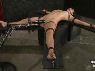 BDSM - Ultimate - Total Control (3)