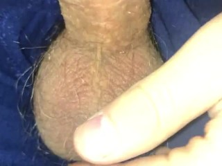 Extremely Hard Cock in Boxers Ready to be Sucked