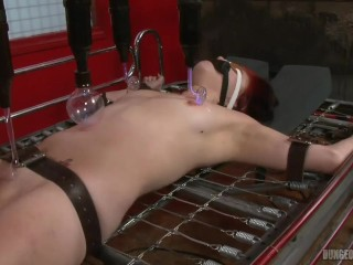 Sandy Electro Bed Torture